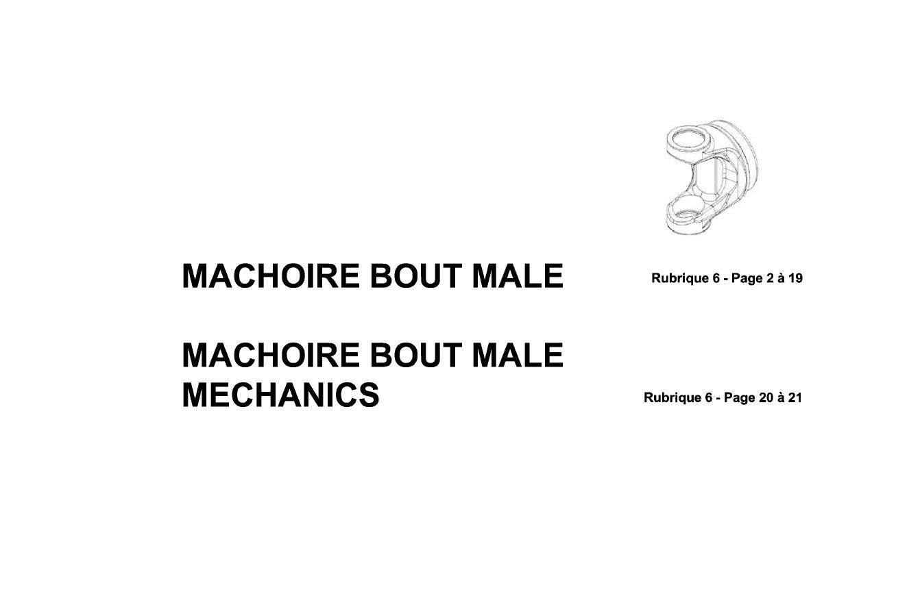 machoire-bout-male-2017-2